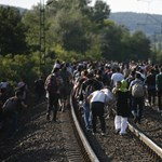 Kiosztották a Pulitzer-díjakat: magyar fotósok is nyertek