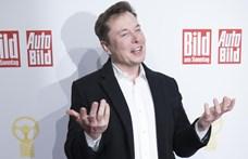 Elon Musk megnyerte a pedofilozós ügyét