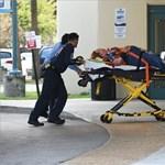 Öt embert ölt meg egy lövöldöző a floridai reptéren