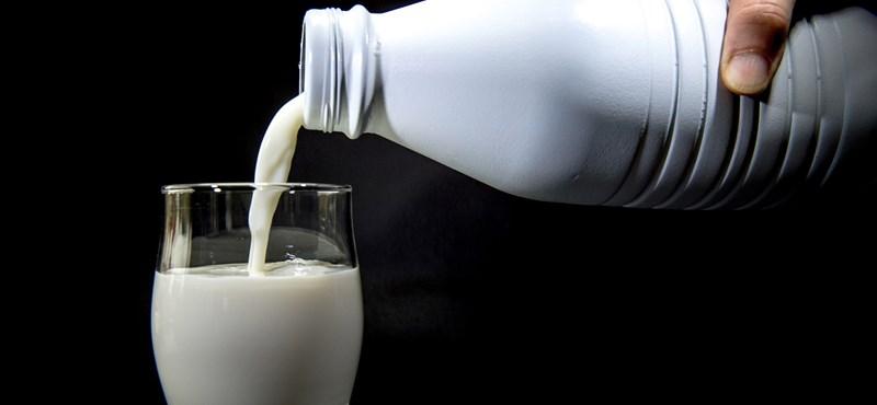 Cseh és szlovák tejeket vonatott ki a forgalomból a Nébih