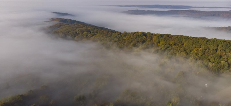 Hatalmas köd lesz szombat reggelre, kilenc megyére veszélyjelzést adtak ki