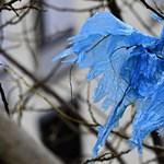 Ír tinédzser ötlete segíthet megoldani a mikroműanyag-krízist