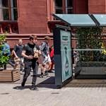 Élő növényekkel díszített buszmegállók lesznek Ferencvárosban