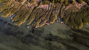 Nincs kockázatuk a Balatonban kimutatott gyógyszerhatóanyag-maradványoknak