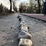 Húszezer követ tettek ki a Margitszigeten a koronavírus áldozataira emlékezve