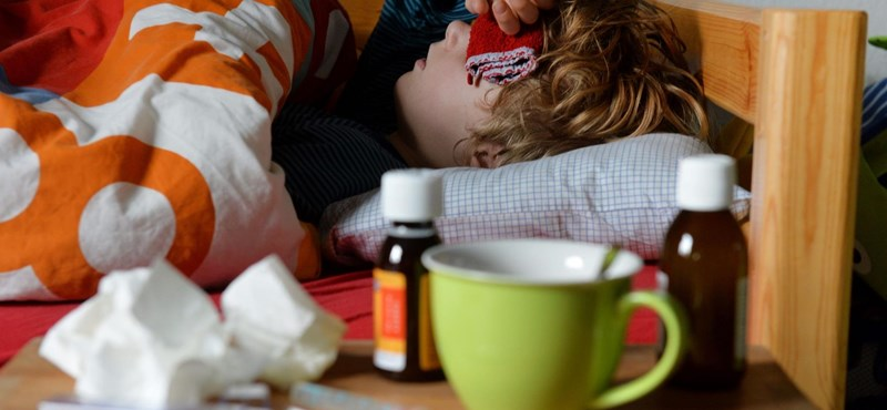 December végén érhet Magyarországra az influenzajárvány