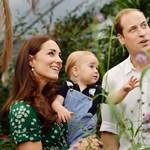 Royal baby: Dianáról neveznék el Vilmosék gyermeküket
