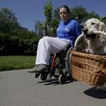 Felülvizsgálják a rokkantnyugdíjasok kedvezményeit