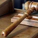 G. Szabó: A közigazgatási bíróságok a gazdaságra is veszélyesek