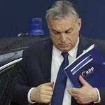 Kiderült, ki volt a titokzatos kopasz férfi, aki meccset nézett Orbán Viktorral