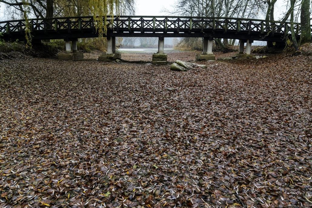 mti.14.11.17. - Debrecen: kiszáradó tavak Debrecennél - Vekeri-tó
