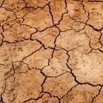 Közel kerültek a kiszáradáshoz Izrael vízforrásai