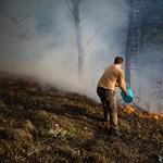 Országszerte tüzek pusztítottak
