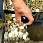 Pénzeső hullhat a vállalkozásokra