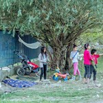Szerb kórházakig verik vissza a menekülteket a magyar egyenruhások