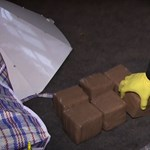 141 kiló kábítószert találtak a rendőrök egy solymári házban