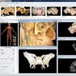 Hódít az emberi test 4D térképe az orvosképzésben