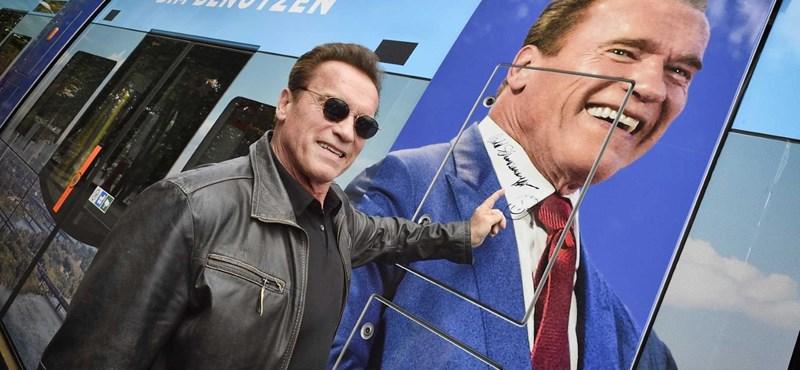 Schwarzenegger bécsi teknősöket ment