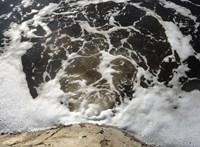 """""""Ki a Tisza vizét issza"""" – rengeteg műanyag van a hazai folyók alján"""