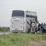 Lefotózták, ahogyan a szerb rendőrök a zöldhatárhoz küldik a menekülteket