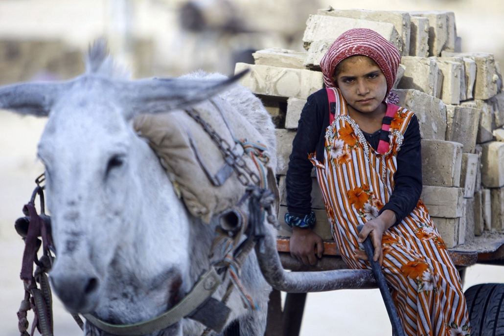 afp. nagyítás - hét képei - 2014.05.26. Irak, kislány szamárral - An Iraqi girl rides a cart carrying bricks as she works at a brick factory near the central Iraqi shrine city of Najaf on May 26, 2014. Five out of seven brick factories in the region have