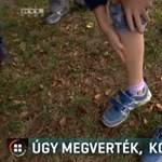 Autista unokatestvérét próbálta védeni a Berkeszen megvert 11 éves fiú