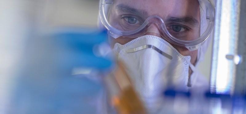 Trükkök és praktikák a tudomány világában – egy professzor szubjektív vallomása a kutatás belső világáról