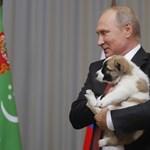 A Kreml propagandaadója már a spájzban van