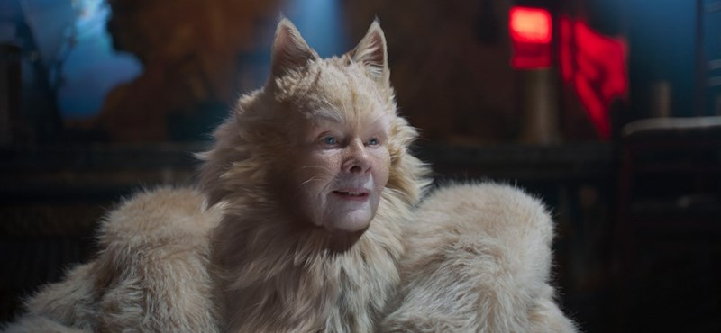 Andrew Lloyd Webber hated cats so much that he bought a dog
