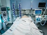 Megírták a brit orvosoknak, kinek adjanak lélegeztetőgépet