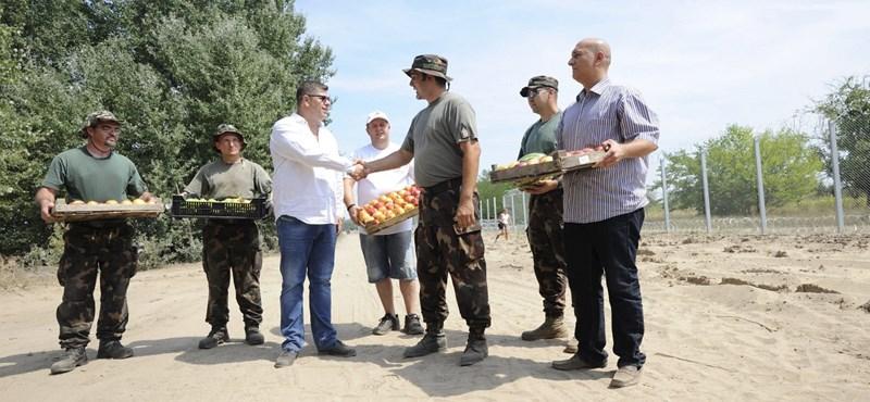 Fotók: dinnyét küldtek a kerítésépítőknek