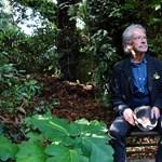 Több írót sokkolt Peter Handke irodalmi Nobel-díja