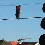 A nap videója: a győri opeles, aki a piros lámpát és a sávokat sem tiszteli
