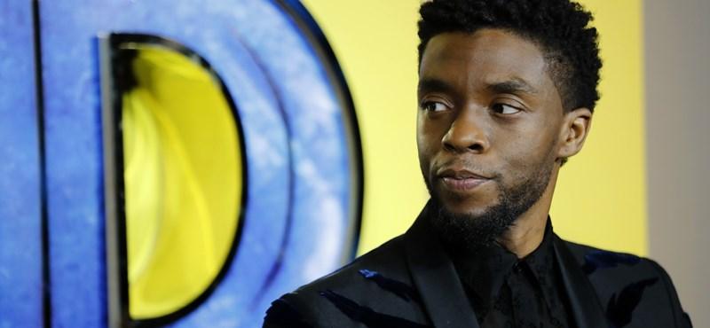 Chadwick Boseman rákbeteg gyerekekben tartotta a lelket