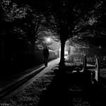 Déli fekvésű sírhely eladó Farkasréten