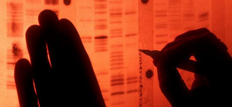 Nagy lépést tettek kutatók a rák és a vakság gyógyítása felé