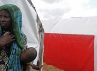 Trump kivonta az összes katonáját Szomáliából