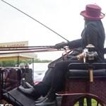 Agrárbéke: a NER nagygazdái Márki-Zayt is elviselték a haszonállatok szépségversenyén