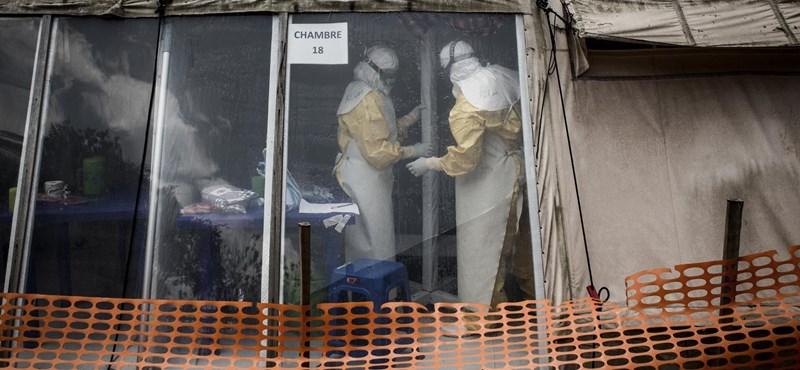 Megdöbbentően gyorsan kezdett terjedni az ebola