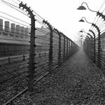 Hatvan év után zsuppolták vissza Németországba a náci táborőrt