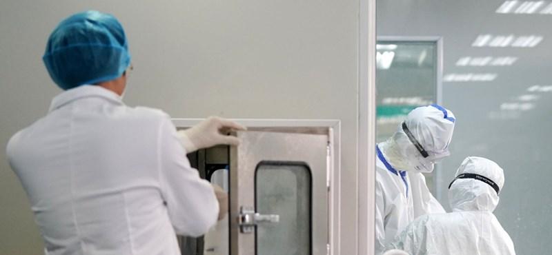 Koronavírus: meggyógyult és hazamehetett egy németországi fertőzött