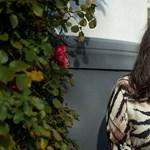 Negyvenhét férfi parfümőr között egy női Orr: Minya Viktória
