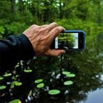 Egyre inkább bajba kerülnek a fényképezőgépek a mobiltelefonok miatt?