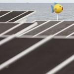 Veszélyt jelenthetnek az élővilágra a megújuló energiaforrások