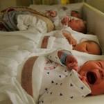 Problémás újszülöttek adatait tartalmazó adatbázis jött létre