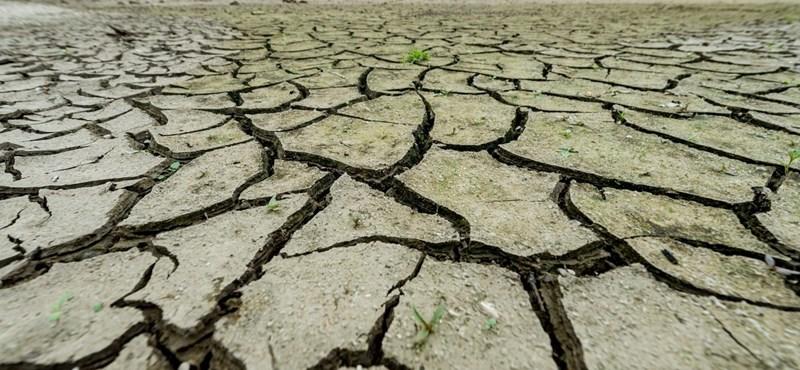 Már alig van iható víz Izraelben