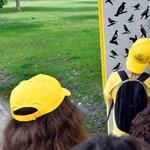 Madárbarát tanösvény nyílt a Városligetben