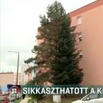 Két társasház felújítási pénzét nyúlhatta le egy közös képviselő Komlón