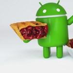 Bejött a felhasználóknak a tavaly bemutatott Android, de még így sem ez a legnépszerűbb verzió