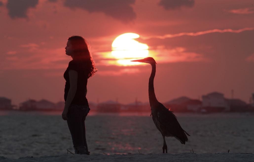 Tengerparton nyaralók nézik a naplementét.